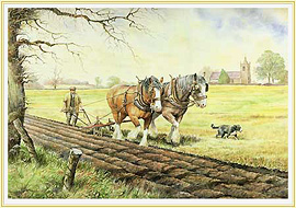 Early Furrows - a Farming Picture from the past - click for details