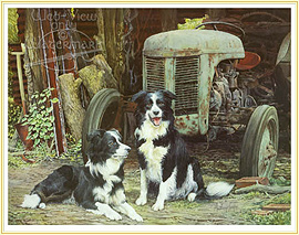 Partners - a favourite Farming Picture - click for details