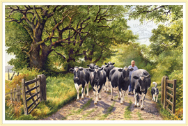 Slow Lane - a classic subject for a Farming Picture - click for details